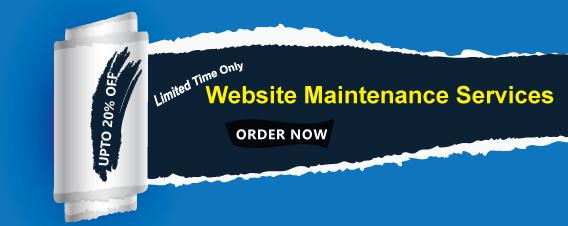Website Service Offer